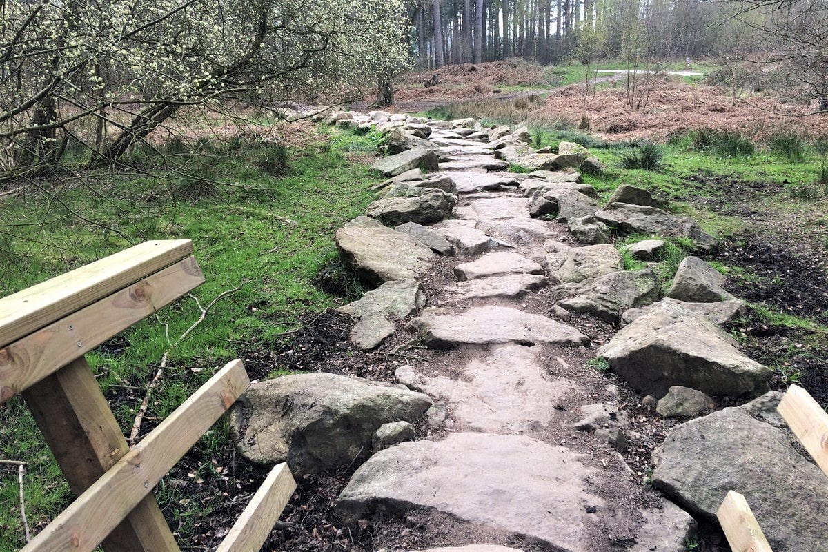 Cannock Chase Trails | Gnarly rock garden on the Stegasaurus section, Follow the Dog Trail