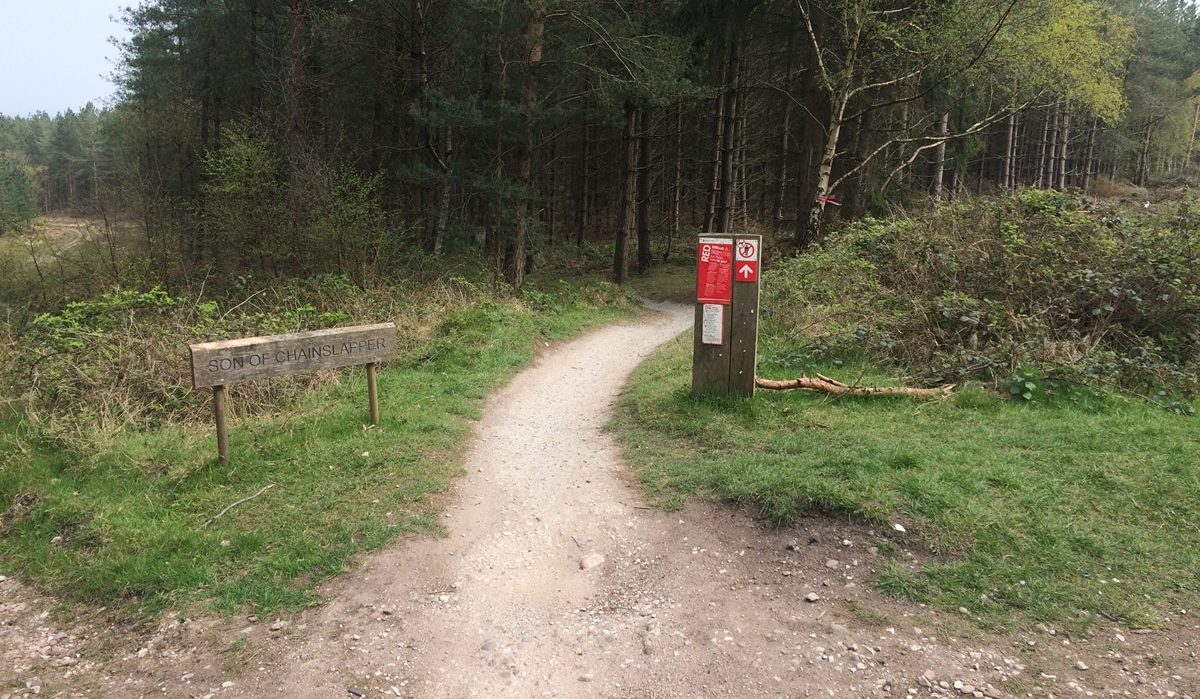 Son of Chainslapper section on Follow the Dog trail