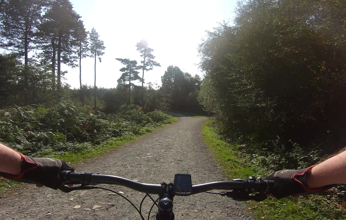Descent on the Whitemoor Trail