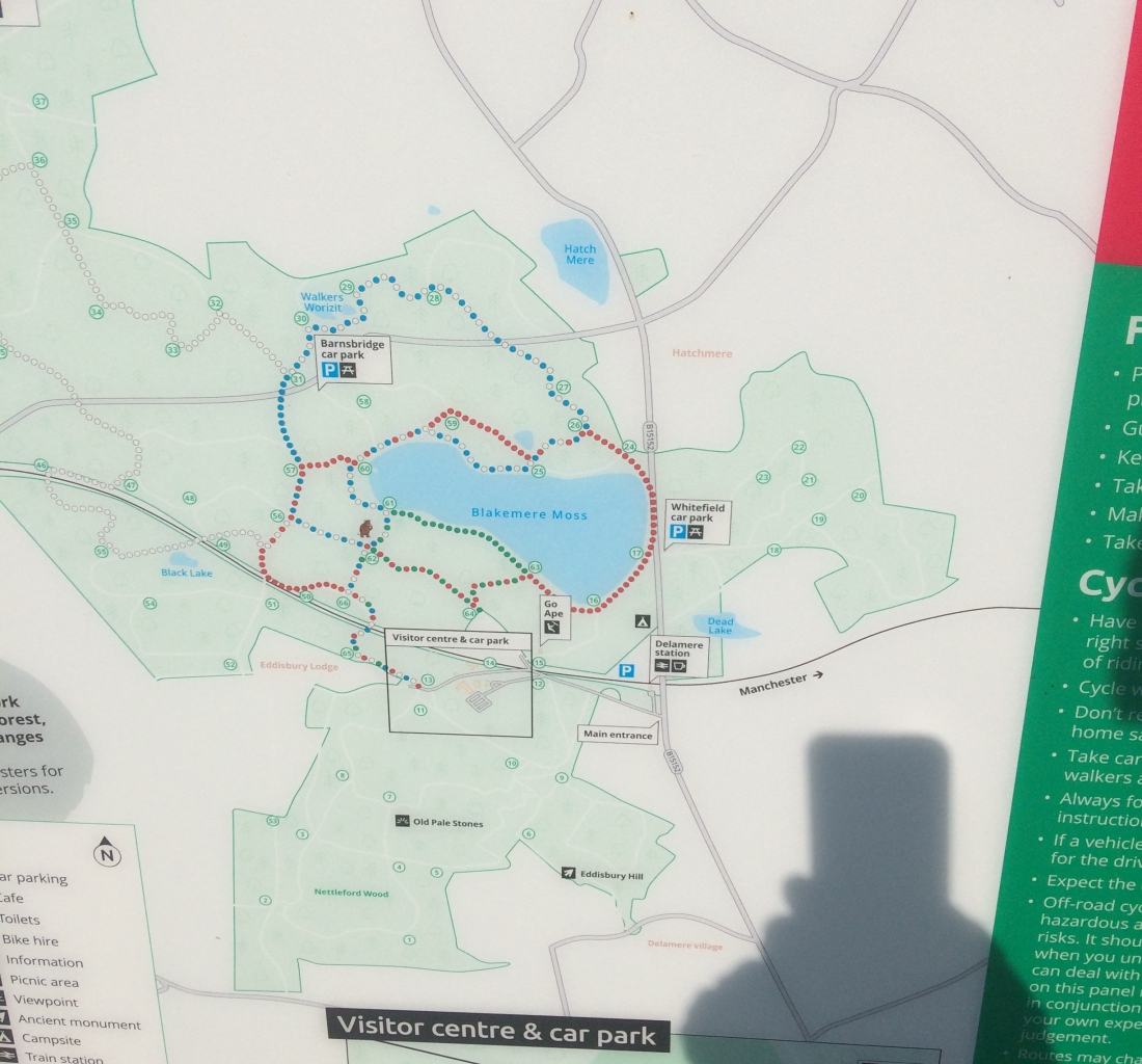 Delamere Forest Trail Map